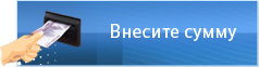 Изображение - Как пополнить кошелек вебмани через терминал 140805160033_terminal4